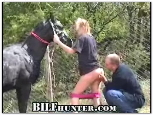 Bilfhunter Search Videos