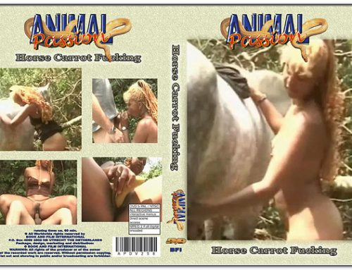 Animal Passion – Horse Carrot Fucking