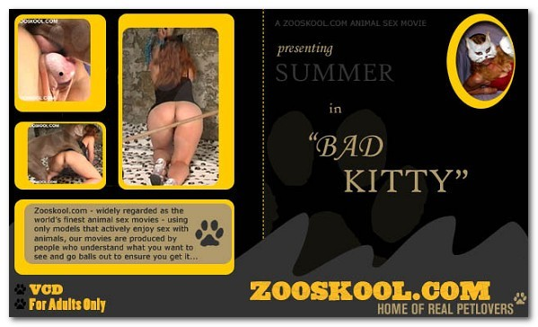 Home Of Real PetLover - Bad Kitty