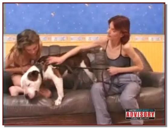 Kitty Shade - Animal Sex PornStar - ZooSex Scene 14