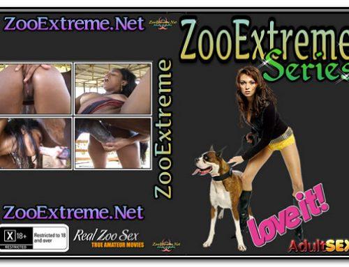 ZooExtreme Serie 17