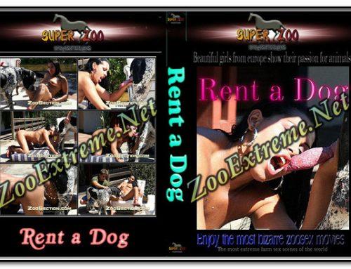 Super Zoo – Rent a Dog