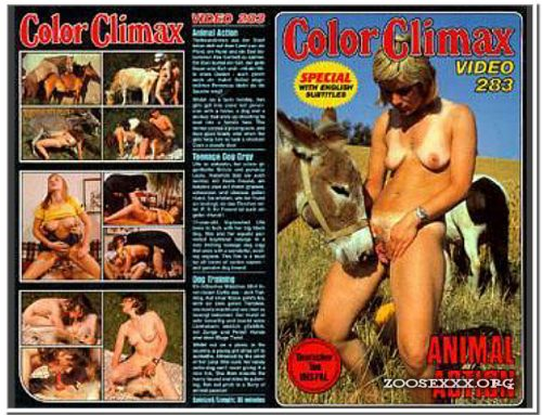 Color Climax – 283 – Animal Action