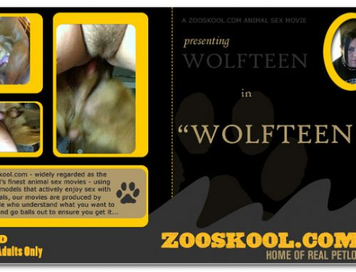 Home Of Real PetLover – Wolf Teen Wolfteen 2