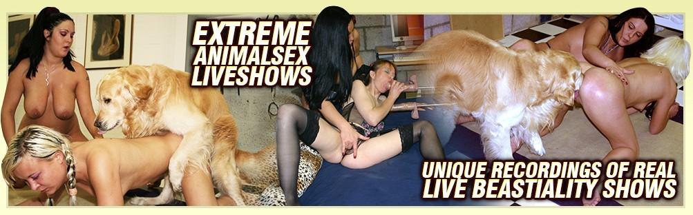 Sex movies dog best Dog