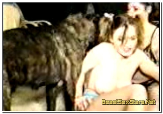 0188 - Dutch Dog, 2 Women with Dog