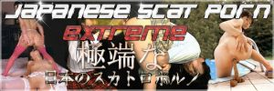 日本のスカトロ映画