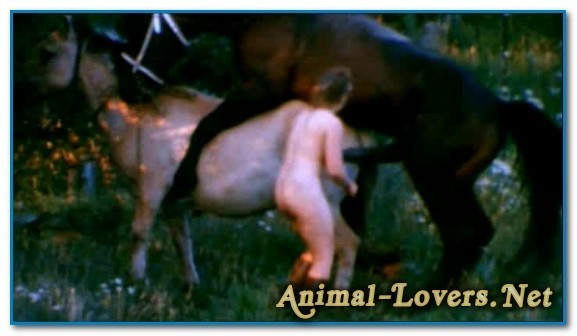 Bodil Joensen - Animal Sex Pornstars - The Search For Animal Farm