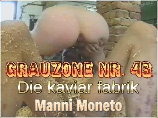 Grauzone Nr. 43 - Die kaviar fabrik - Manni Moneto