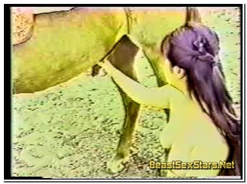 Jap Girl Sucking Horse
