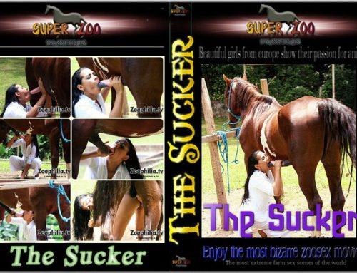 Super Zoo – The Sucker