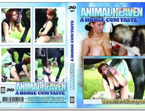 Animal Heaven – A Horse Cum Taste