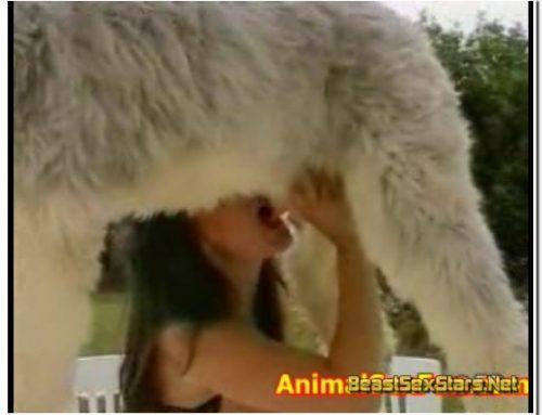 091 – Animal Sex Farm