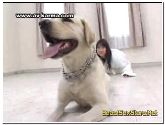 206_Japanese ZooSex Taboo