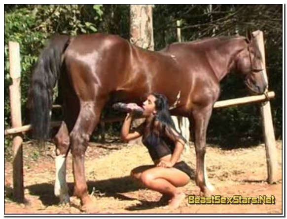 0090 - EXTREME SCENES OF SEX WITH VARIOUS ANIMALS