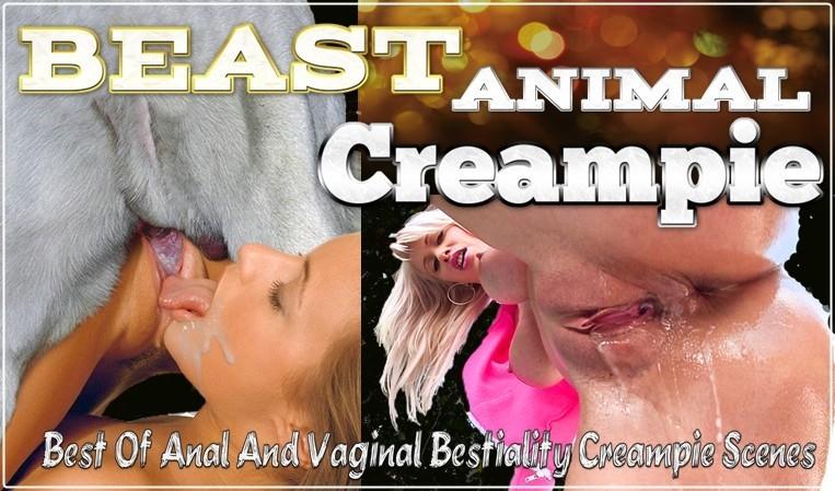 ANIMAL CREAMPIE