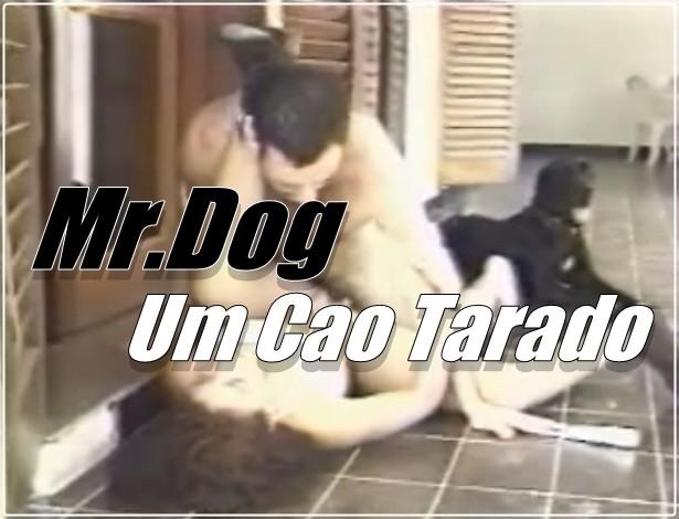 Mr.Dog - Um Cao Tarado