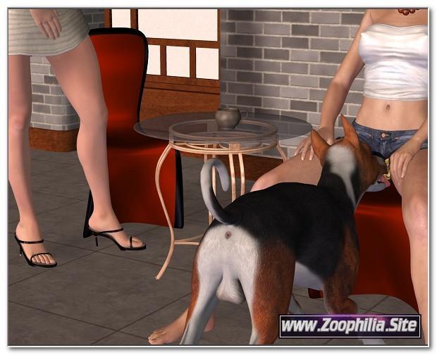 102 - ZooPorn Comics