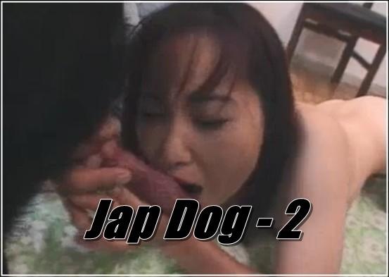 Jap Dog - 2