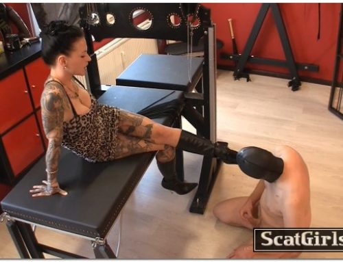Extreme Scat Domination – Lick my dirty boots and be my toilet