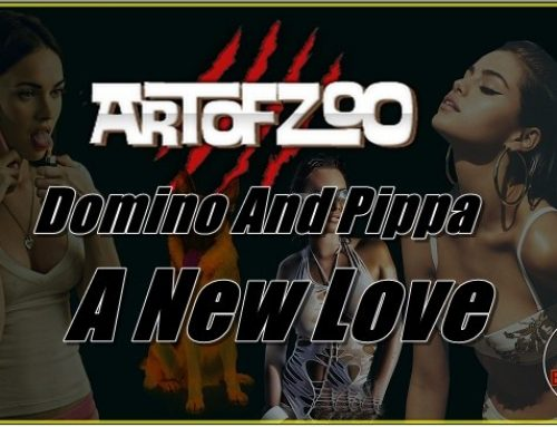 ArtOfZoo.Com – Domino And Pippa – A New Love