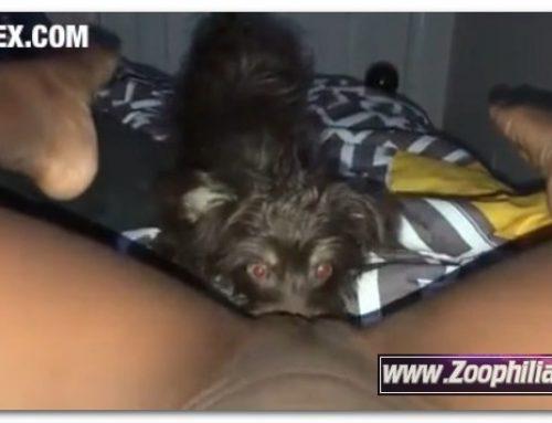 Amateur ZooSex – Part 1 Puppy Eats Me On My Period