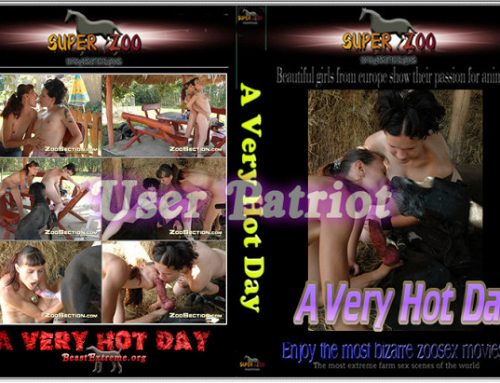 Super Zoo – A Very Hot Day