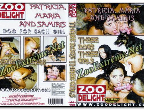Zoo Delight – Three Dogs Three Girls