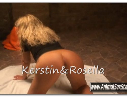 154 – Rosella