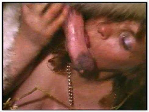 Bodil Joensen – Animal Sex Pornstars – Sucking Pony