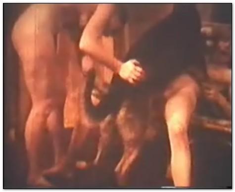 Bodil Joensen – Animal Sex Pornstars – Vintage Sexology